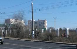 Рекламное агентство «Скандал» обрезает деревья на «Локомотиве», наплевав на запрет сити-менеджера Читы