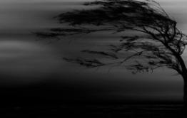 МЧС предупредило забайкальцев о сильном ветре 28-30 мая