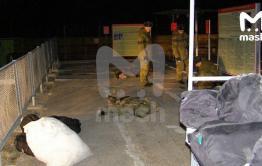 Одного из выживших во время расстрела в Горном перевезли в Читу, с трупами работают следователи