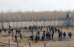Бывший сотрудник ИК-10 взят под стражу по обвинению во взяточничестве