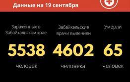 За сутки в Забайкалье почти 60 человек заразились коронавиурсом
