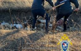 Бомж убил мужчину на животноводческой стоянке в Акшинском районе