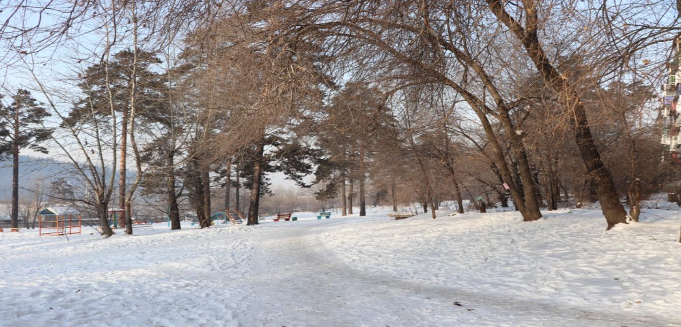 Гагаринский парк опередил сквер Солнечный в голосовании по благоустройству в Чите