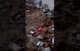 В Чите по ул. Столярова, 35 УК не вывозит мусор десять лет
