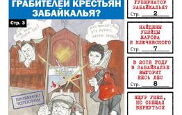 PDF-версия «Вечорки» № 13 (410) : пожар в Кемерово, Собчак – губернатор ЗК, убийцы Жарова и Ключевского
