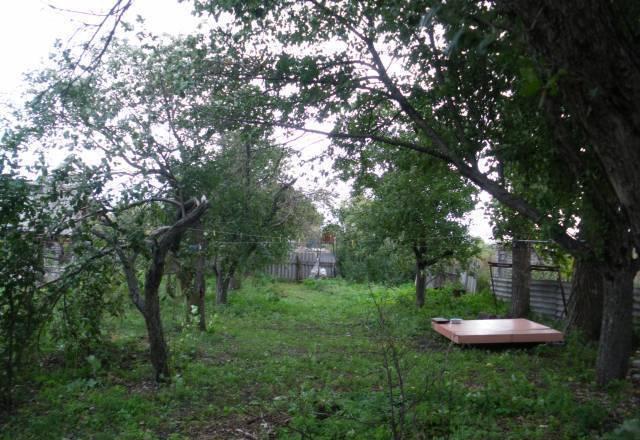 Жители Воронежской области предложили переехать пострадавшим от паводка забайкальцам к ним в село