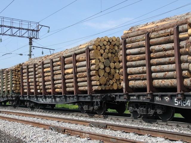 Запретят ли вывоз древесины в Китай и чем это грозит Забайкальскому краю?