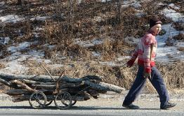 У 70 % жителей Сретенска нет дров для отопления