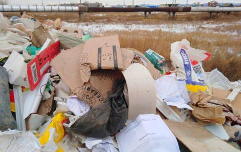 Директор педколледжа возмутилась подрядчиками, выкинувшими мусор их учреждения на мемориале в Чите
