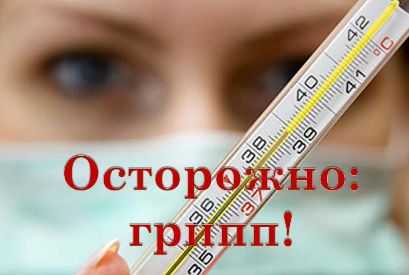 В Забайкалье гриппом болеют 23 района
