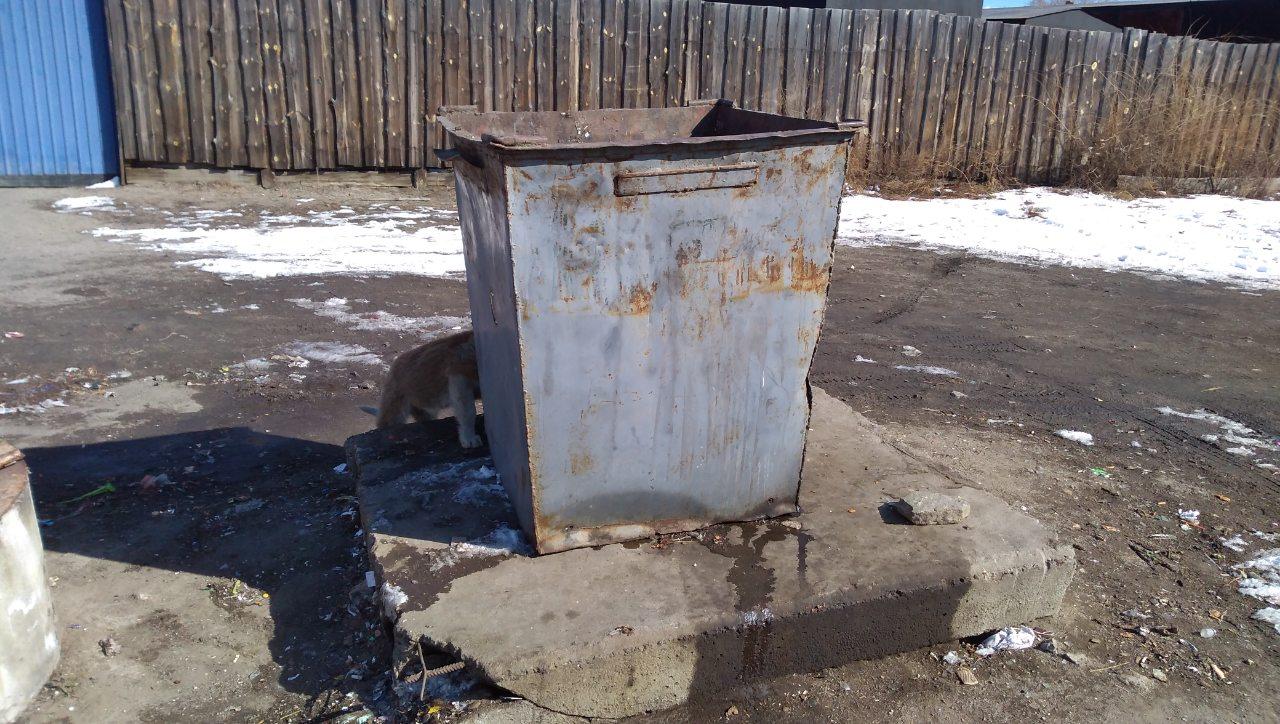 ЖителиМолодежной: До визита Осипова мы даже кмусоркеподойти не могли