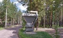 Жители Карповки недовольны действиями властей – отдать землю иностранцам