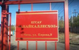 Экс-глава «Забайкаллесхоза» загремел на пять лет за хищение бюджетных денег