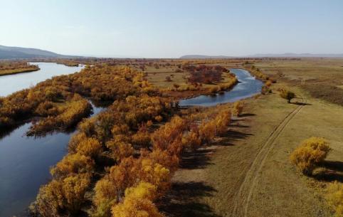 Онон — речной царь (+видео)