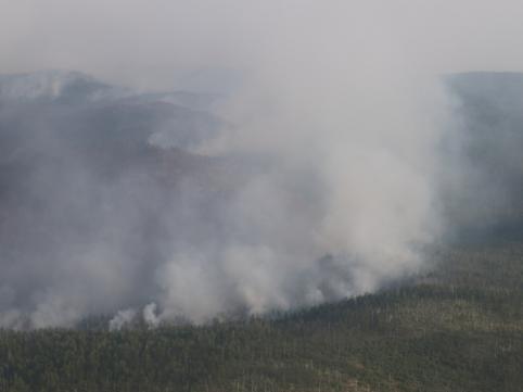 Дым от лесных пожаров в соседних регионах принесло в Забайкалье