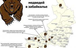 Медведя, вышедшего к домам за Ингодой, застрелили