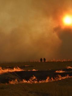 Этюд в багряных тонах. Степной пожар в Забайкальском районе. 12 апреля