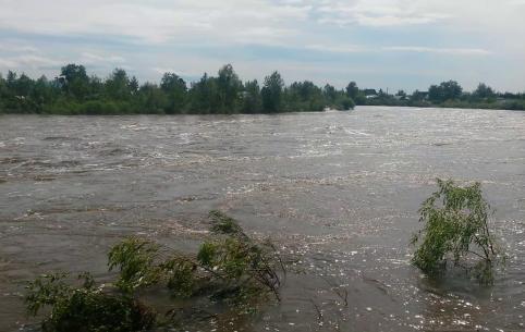 В реке Читинка утонули мужчина и ребенок