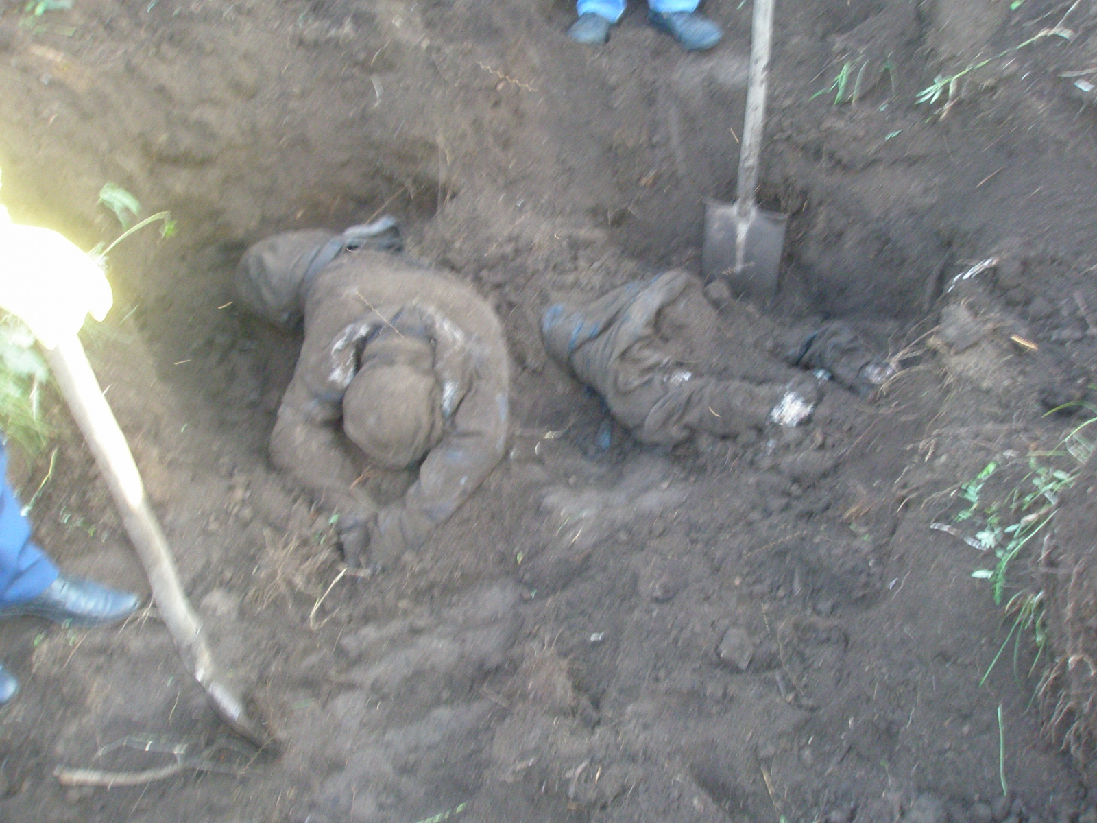 Дело об убитых узбеках: доказано два случая педофилии