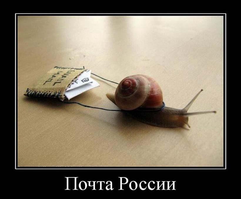 Почта России — не начнем работать, пока нас не пнут из Читы