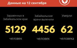 Больше 60 человек заразились коронавирусом за сутки в Забайкалье