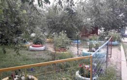 Читинцы устроили праздник двора