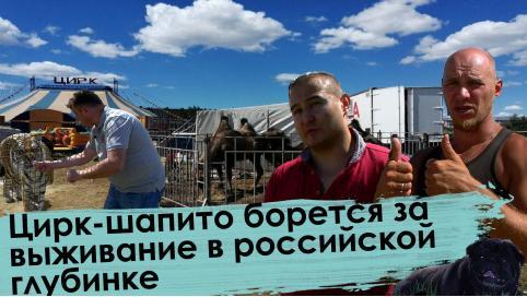 Цирк-шапито «Звездный» остается в Чите. В Новосибирск едет только дрессировщик с тиграми.