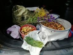 Какое лето в Заяблонье: грибы, цветы, мангыр и тряпка. 26.07.2020