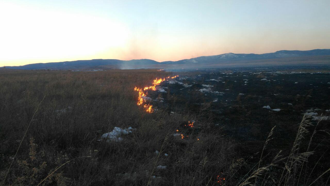 Забайкалец заплатит за тушение пожара, который произошел по его вине