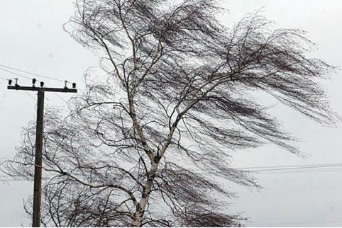 Вертер, дождь и грозы ожидаются 21-23 мая в Забайкалье