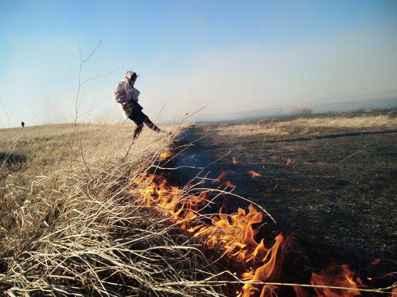 Власти ввели особый противопожарный режим в большинстве районов края