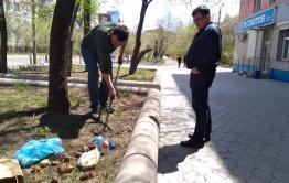«Вечорка» озеленяет город и садит картошку напротив редакции (видео)