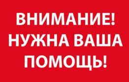 Объявлен сбор средств на помощь сотруднице нерчинской библиотеки — ее сын погиб в Красноярске