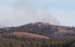 В Акшинском районе горит лес