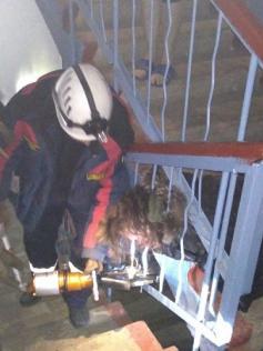 Спасатели вытаскивают женщину, застрявшую в перилах лестницы. Чего она туда полезла?