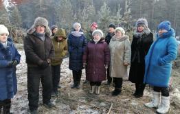Жители Атамановки подписывают петицию против вырубки леса