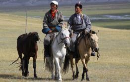 Вооруженные монголы задержаны в Забайкалье