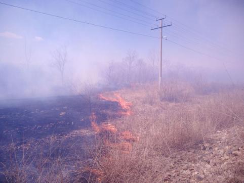 Поджигателя сухой травы догнали по следам от трактора в Улётовском районе