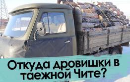 Забайкальские продавцы дров. Заблудились в трех соснах.
