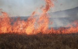 Пожарные Забайкалпожспаса за сутки спасли от огня три чабанские стоянки