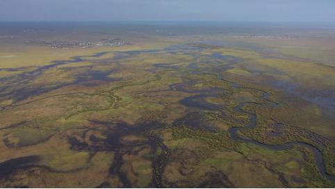 Российские парламентарии обратятся к монгольским коллегам с призывом спасти Торейские озера