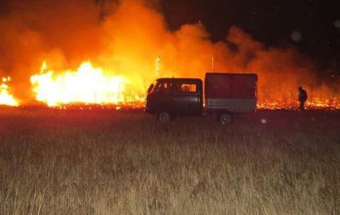 Пожарным удалось локализовать лесной пожар в «Цасучейском бору»