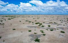 Дно озера Зун-Торей. Ещё несколько лет назад здесь было хотя бы несколько миллиметров воды. Фото Олега Корсуна