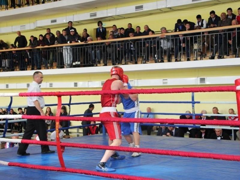 Спортзал для занятий боксом начнут строить в Чите в новом году