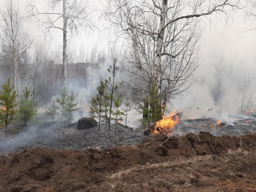 На территории Забайкалья действуют 13 пожаров