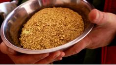 """В этой тарелочке золота примерно на 33 миллиона рублей. Артель """"Бальджа"""", сентябрь. Сюжет смотрите на """"Вечорка ТВ"""""""