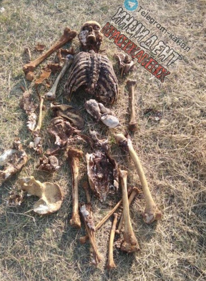 Человеческий скелет нашли в бочке с водой в Краснокаменске