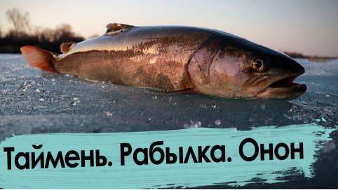 Рыбалка на Ононе: последний лед