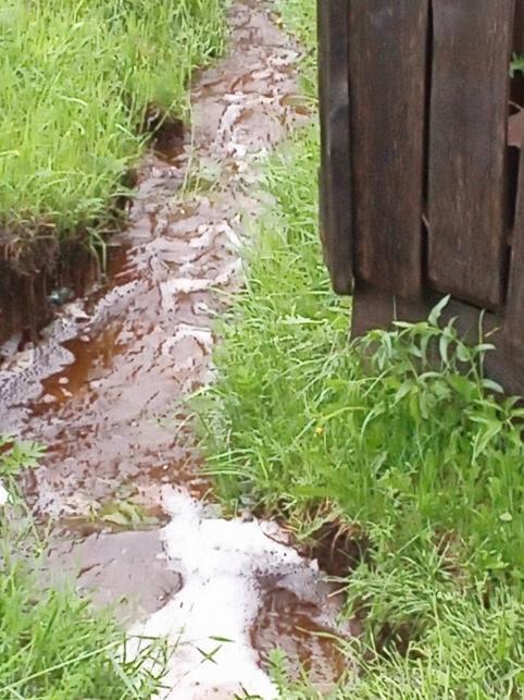 «Вечорка ЦУР»: Каждый год мой огород топят ручьи, — жительница Александрово-Заводского района