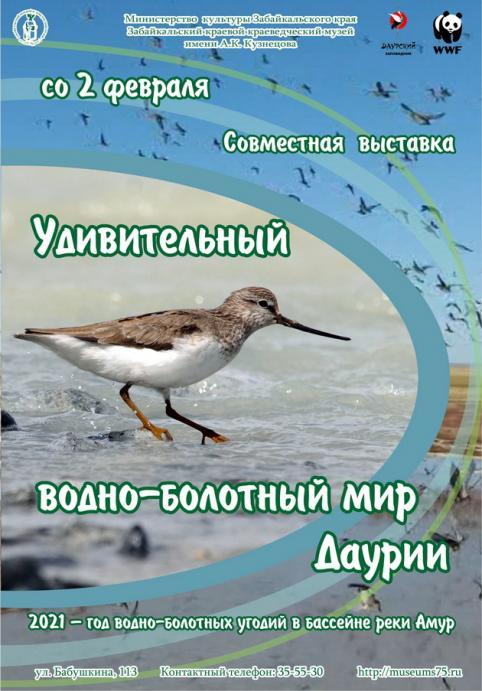 В Чите откроется фотовыставка «Удивительный водно-болотный мир Даурии»